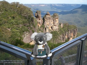 visit the blue mountains by campervan and see this koala!