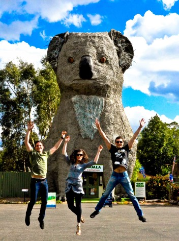 4b72a97a The Giant Koala. Furthermore many of these Big Things of Australia ...