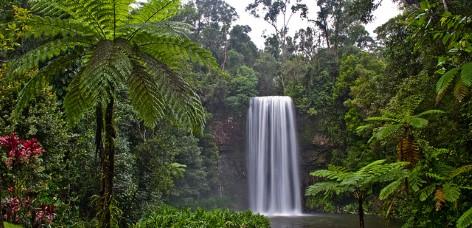 Milla Milla Falls in the Atherton Tablelands