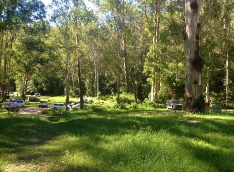 Free Weeny Creek Campsite