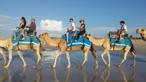 Camel riding at biggest sand dunes of Australia
