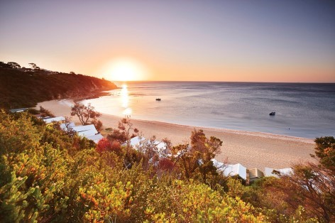 Mornington Beach could be the first stop on your Melbourne to Phillip Island Tour