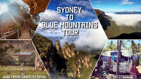 Sydney to Blue Mountains Tour